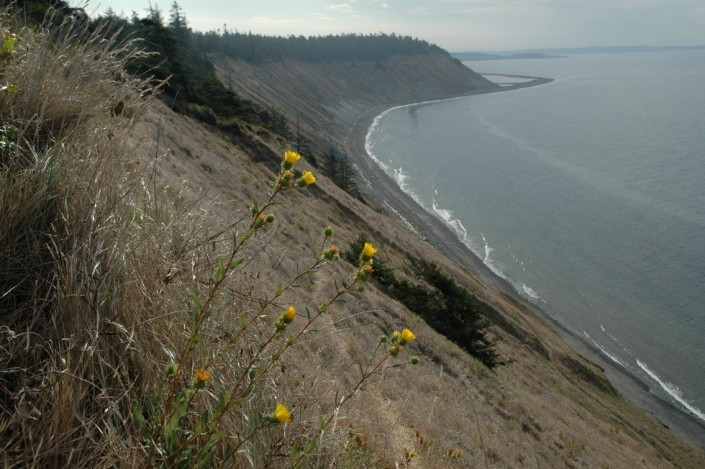 Fort Ebey 2