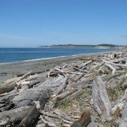 whidbey island real estate
