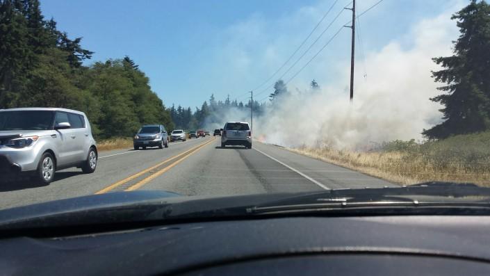 freeland brush fires