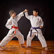 karate classes whidbey island